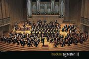 Orchestra1_Credit K.W. Foto 1_small